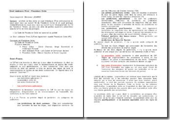 Le droit judiciaire privé : la procédure civile - les règles de fonds en droit substantiel