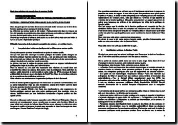 db3bd2742bb Droit des relations du travail dans le secteur public