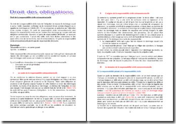 Droit de la responsabilité civile extracontractuelle