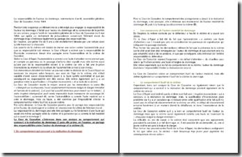 La responsabilité de l'auteur du dommage, commentaire d'arrêt, assemblée plénière, Cour de Cassation, 9 mai 1984