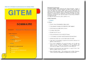 Etude de la stratégie de communication de l'enseigne Gitem