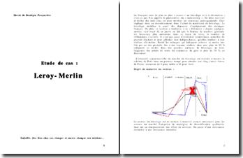 Analyse d'une entreprise de bricolage et de décoration : le cas Leroy Merlin