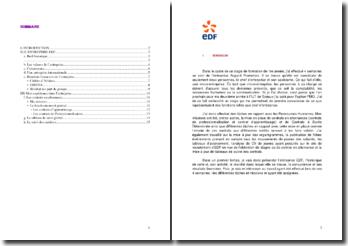 Rapport de stage en rapport avec les Ressources Humaines effectué au sein d'EDF