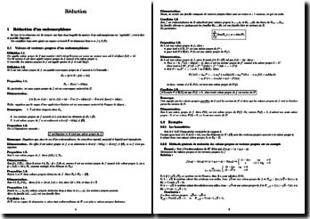 Réduction d'un endomorphisme et d'une matrice carrée