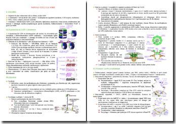 Cours de biologie moléculaire et génétique PACES (première année de médecine)