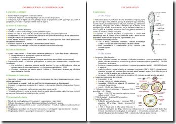 Cours d'embryologie PACES (première année de médecine)