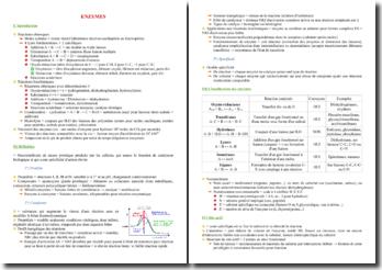 Cours de biochimie des enzymes PACES (première année de médecine)