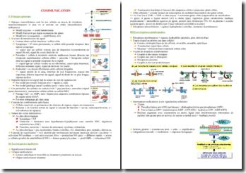 Cours sur la communication cellulaire PACES (première année de médecine)