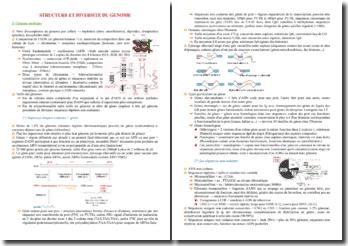Cours sur la structure et le diversité du génome PACES (première année de médecine)