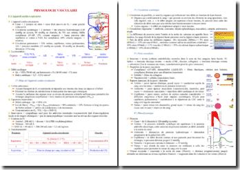 Cours sur la physiologie vasculaire PACES (première année de médecine)