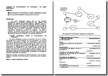 L'analyse de l'environnement de l'entreprise : les cycles catalytiques