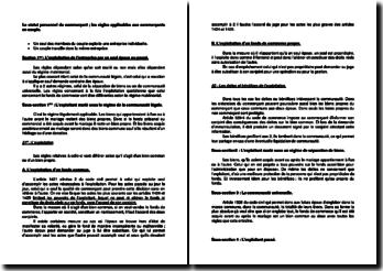 Le statut personnel du commerçant, les règles applicables aux commerçants en couple