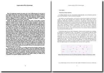 Compte-rendu de TP de microbiologie sur les bactéries