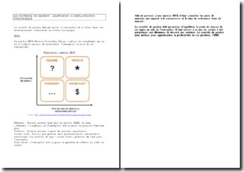 Le contrôle de gestion: adaptation à l'implantation stratégique