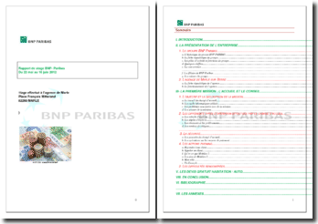 Rapport de stage effectué au sein de BNP Paribas en tant que chargée d'accueil