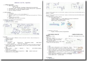 Méthodologie d'ablation de fils/agrafes
