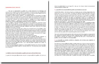 Commentaire d'arrêt de la Deuxième Chambre civile de la Cour de cassation du 13 décembre 2012 : le fait de la chose inerte