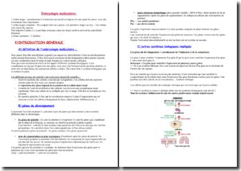 L'embryologie moléculaire