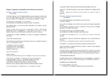 Intégration et romanisation sous les Flaviens et les Antonins