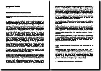 Commentaire d'arrêt de la Deuxième Chambre civile de la Cour de cassation du 12 décembre 2002 : la responsabilité du fait d'autrui