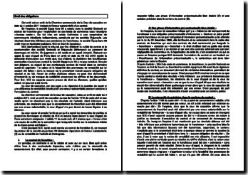 Commentaire d'arrêt de la Chambre commerciale de la Cour de cassation en date du 4 octobre 2011 : l'erreur substantielle d'un contrat
