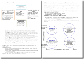 Analyse des 5 forces pour IMB