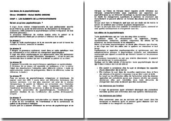 Les bases de la psychothérapie - Olivier Chambon et Michel Marie-Cardine
