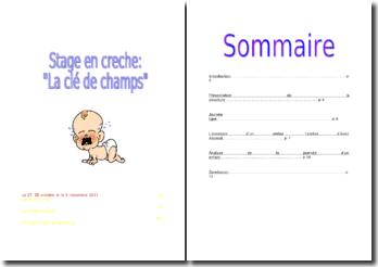Rapport de stage effectué au sein d'une crèche Multi-Accueil : « La Clé des Champs »