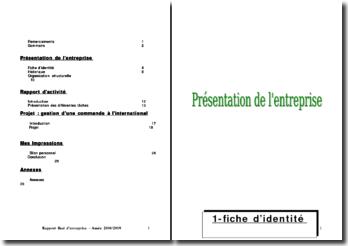 Rapport de stage dans l'entreprise Le Comptoir Paulinois (2009)