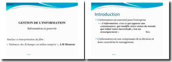 La gestion de l'information : Analyse et interprétation du film : « Violences des Echanges en milieu tempéré », J.M Moutout