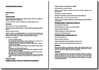 Méthodologie d'un module de formation en négociation interculturelle