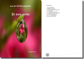 Recueil de poésies : Je suis perdu