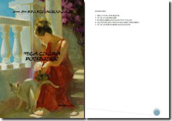 Recueil de poésies : Mea culpa pourquoi