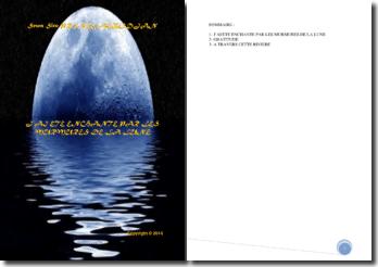 Recueil de poésies : J'ai été enchanté par les murmures de la lune