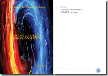 Recueil de poésies : Laisse le succès faire du bruit