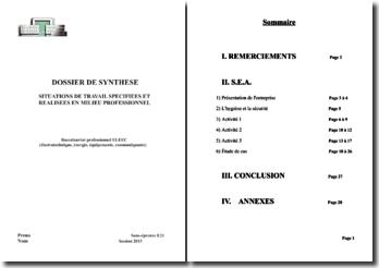 Dossier de synthèse sur les situations de travail spécifiées et réalisées en milieu professionnel pour le Bac Pro ELEEC (2013)