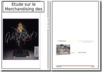 Etude sur le Merchandising des Galeries Lafayette