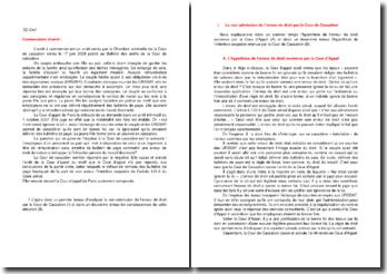 Commentaire d'arrêt de la Chambre criminelle de la Cour de cassation du 17 juin 2008 : l'erreur de droit