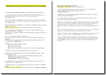 Introduction au droit pénal et droit européen des droits de l'homme