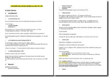 L'actualité des normes pénales au sein de l' UE