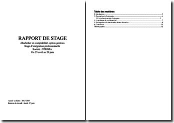 Rapport de stage d'intégration professionnelle au sein de la sociétéStrima