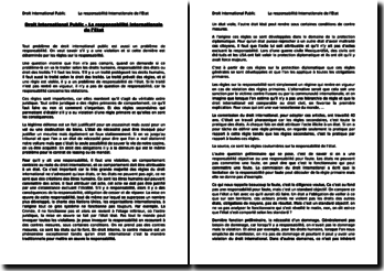 Droit International Public - La responsabilité internationale de l'Etat