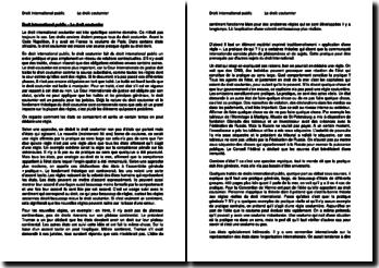 Droit international public - Le droit coutumier