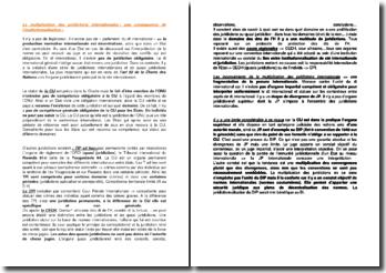 La multiplication des juridictions internationales : une conséquence de l'institutionnalisation