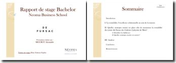 Rapport de stage Bachelor : le cas de Fursac