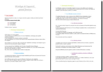 Histologie de l'appareil génital féminin