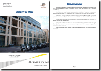 Stage de découverte en entreprise (niveau Terminale) au sein de la société Ernst & Young