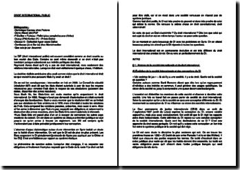Cours de droit international public (DIP) : historique, caractéristiques, codification, processus coutumier et coutume internationale