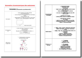 Anomalies chromosomiques des autosomes