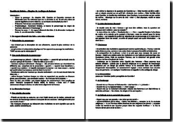 Candide ou l'optimisme, Chapitre 19 - Voltaire : Le Nègre de Surinam